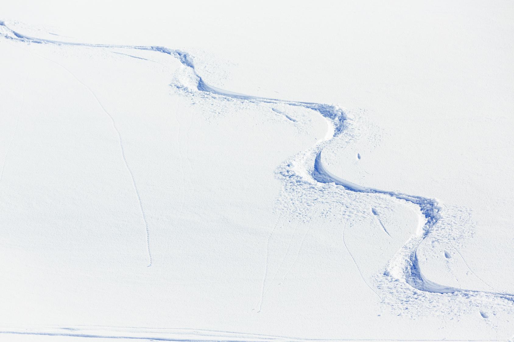 Follow Joel's advice to find tracks like these | Photo Fotolia.com