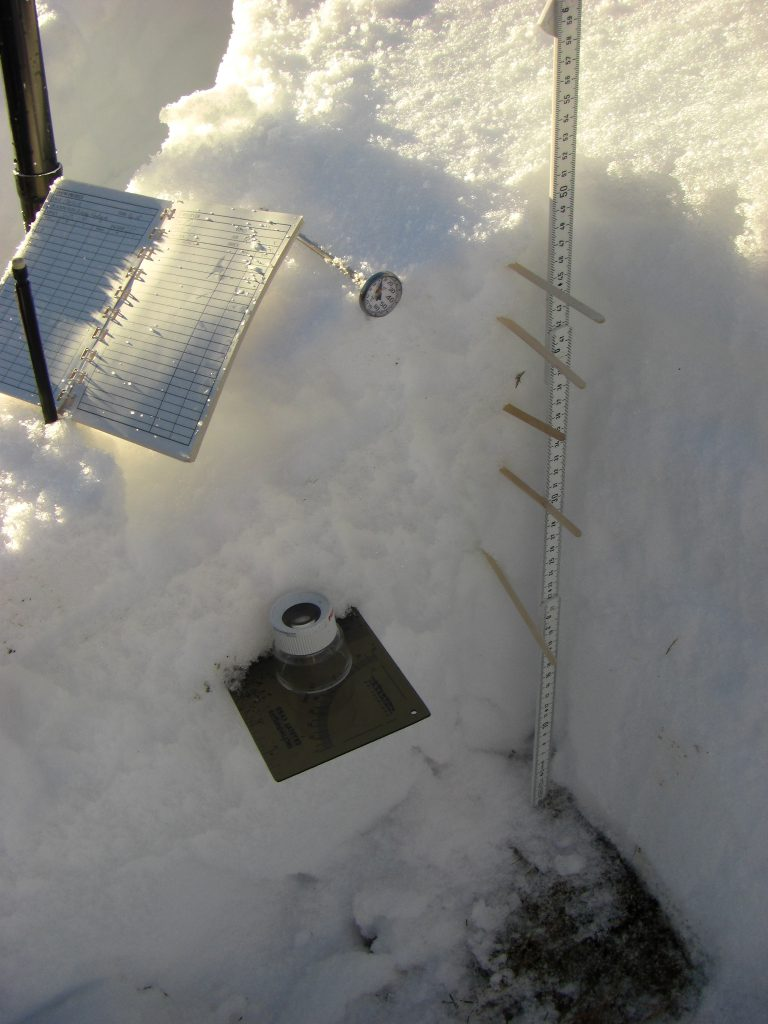 SNOW PROFILE_Dig a hole and plot a graph of hardness2
