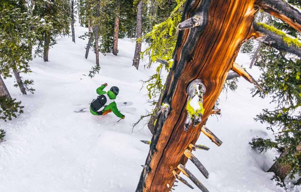 Searching out powder in the trees on the Black Diamond Helio 95 ski
