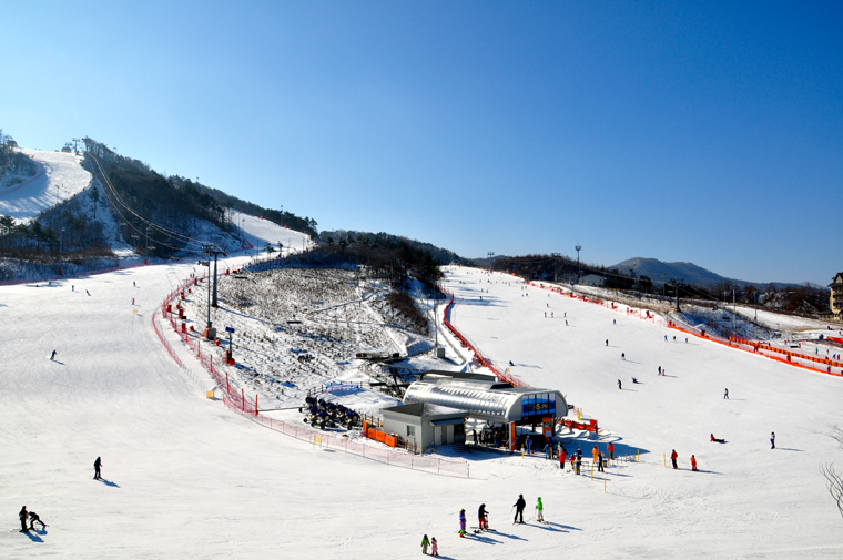 South Korea, where off-piste is a no-no but carving is all the rage | Abi Butcher