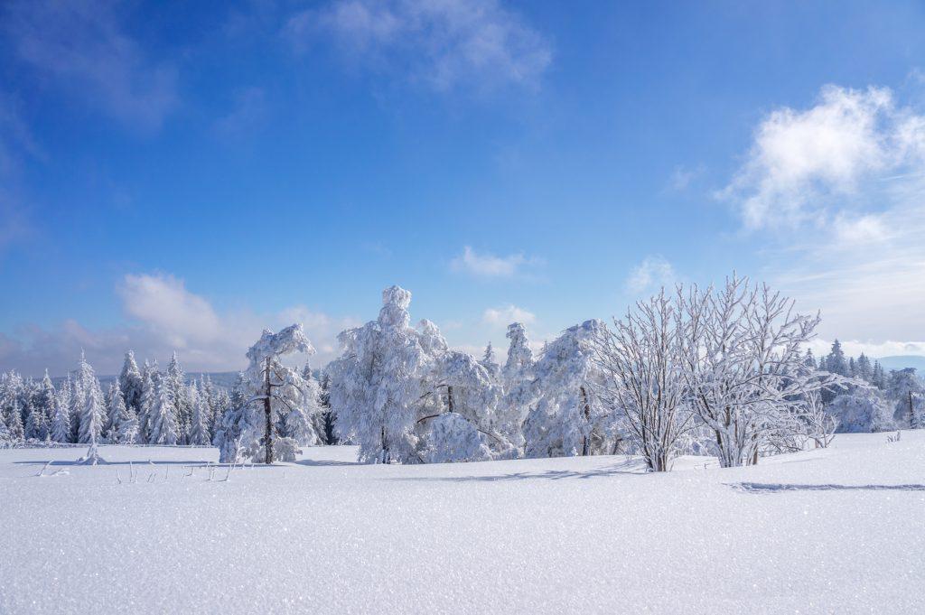 Winterlandschaft rund um den Fichtelberg