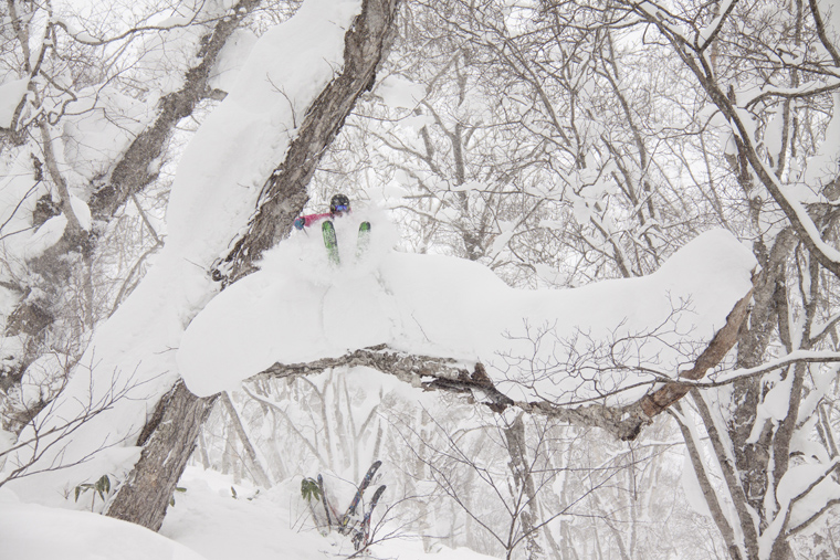 A ski safari in Japan