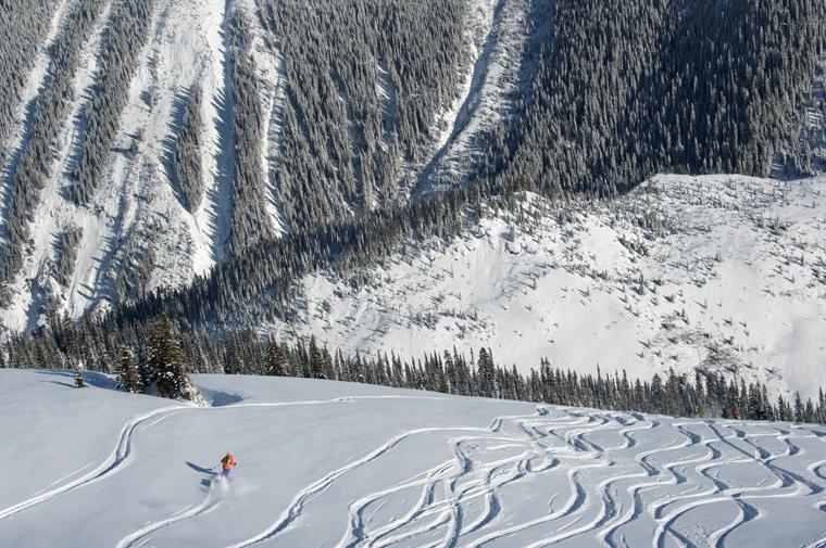 Chasing powder in British Columbia