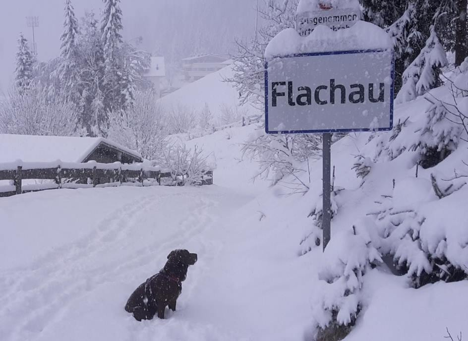 Flachau last Thursday. The resort, near Salzburg, Austria, scored 20 inches last week, with a further 9 predicted over the next two days | facebook.com/tirolerhof