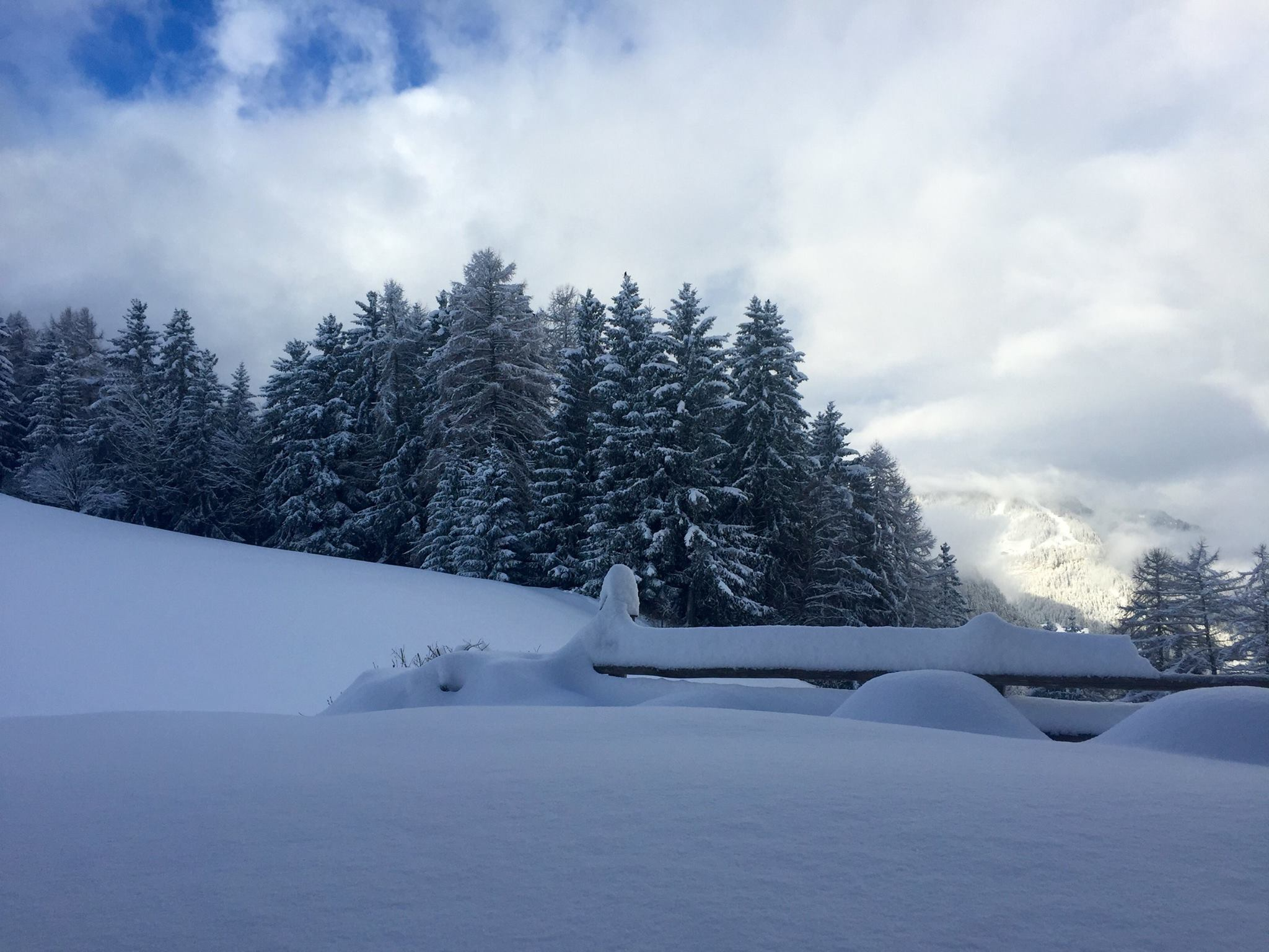The Dolomites are reporting up to 80cm of powder in some spots | facebook.com/Dolomiti-Superski