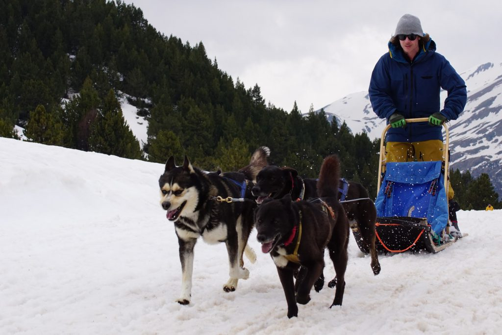 Matt Clark tries dog sledding in Grandvalira ski resort, Andorra