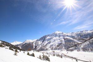 snowchasers - winterized